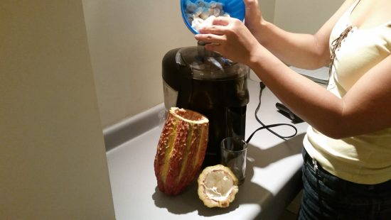 juicing cacao bean